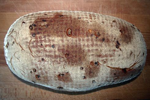 Sahne-Zwiebel-Speckbrot