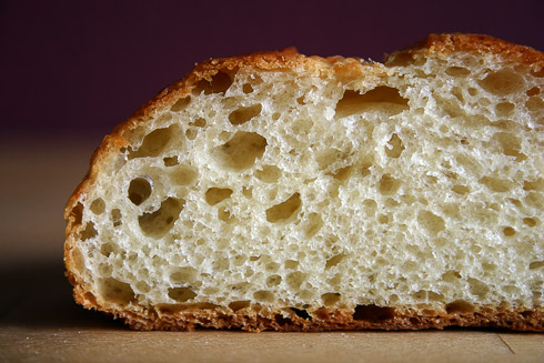 Klein- bis mittelporige, buttergelbe Krume mit leichter Süße - Pain au Lait (Milchbrötchen) nach Michel Suas