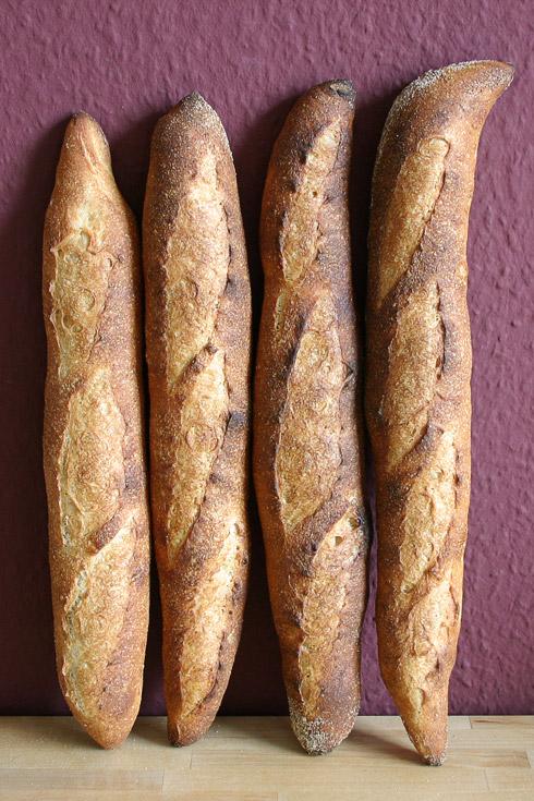 Baguette au Levain mit Poolish: die rechten beiden Baguettes sind mir etwas zu lang geraten und haben sich der Ofenwand nicht widersetzen können...