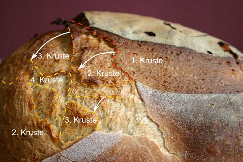 Ein komplexer Vorgang: mehrere Krustengenerationen, die immer wieder aufgebrochen wurden. Genauso bei Kissenlava: sobald die Lava in Kontakt mit Wasser kommt, bildet sich eine dünne Kruste, die durch die nachströmende Lava immer wieder aufgebrochen wird.