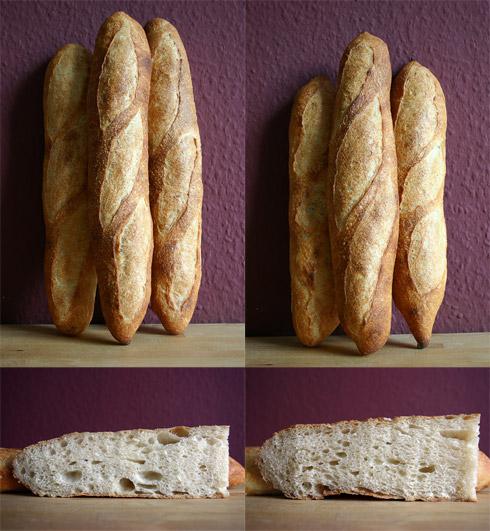 Baguette au Levain mit Poolish (16. Versuch links, 17. Versuch rechts)