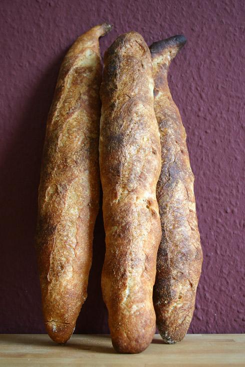 Deformierte Knüppel: Baguette au Levain mit Poolish.