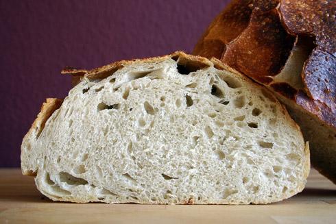 Mittelporige Krume unter extrem gefensterter Kruste: Country Bread (Landbrot) nach Jeffrey Hamelman