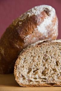 Lockere, mittelporige, nussig-aromatische Krume: Weizenbrot mit 50% Weizenvollkornmehl