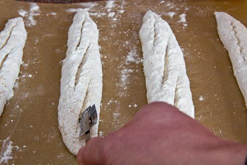 Je spitzwinkliger zur Längsachse des Baguettes, umso besser öffnen sich die Schnitte. Im Foto sind die Schnitte nahe am Ideal, könnten aber noch etwas spitzwinkliger ausgerichtet sein.