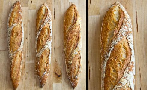 Beispiele für gut geöffnete Schnitte in Baguettes. Allerdings hat jede Öffnung ein anderes Aussehen, mal schmaler, mal breiter. Hier braucht es noch Übung, um jeden Schnitt exakt gleich lang und tief zu setzen.