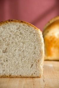 Feinporige, fluffige Krume, die geschmacklich erst durch das Toasten zur Geltung kommt: Toastbrot nach Jeffrey Hamelman