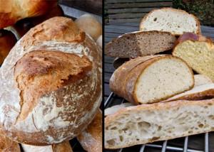Das Gunnison River Bread im Vergleich. Linke Bildhälfte: das von mir eingeschnittene Brot mit großem Volumen. Rechte Bildhälfte: im Hintergrund mein Brot mit größerer Porung als Petras Brot (Mitte), das durch die nicht allzu tiefen Schnitte deutlich weniger Volumen hat.