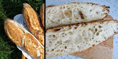 Sehr aromatische, ungleichmäßige und großporige Krume in den Bouabsa-Baguettes, die ich mit Ulrike gebacken habe.