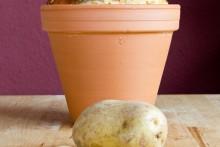 Aus alt mach neu: Quark-Kartoffel-Brot