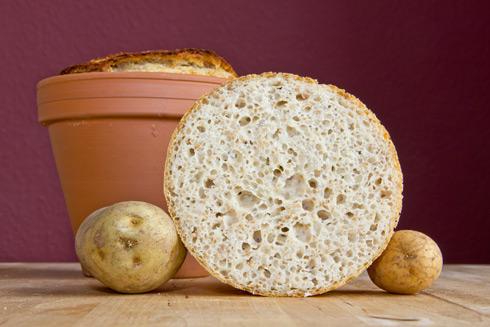 Mittelporige, lockere Krume, deren kartoffeliger Geschmack durch Toasten noch besser zum Tragen kommt: Quark-Kartoffel-Brot