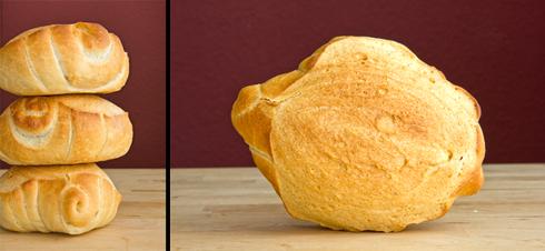 Fast wie ein Mailänderbrötchen, nur größer: Pane di Pasta Dura