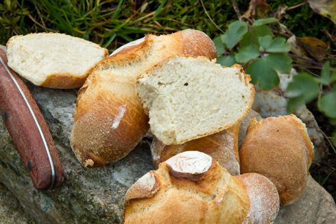 Feinporige Krume und knusprige Kruste - ideal für Aufstriche wie Honig oder Marmelade: Krustis nach Stefanie Herberth