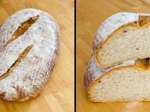 Der 1. Versuch: der Teigling hatte bereits Vollgare. Das Einschneiden hat das Brot einfallen lassen.