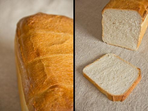 Außen knusprig, innen fluffig und aromatisch: Toastbrot