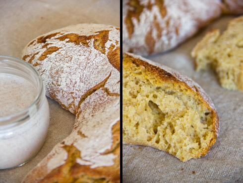 Besonders getoastet ein Genuss: Maiszipfel (mit Backferment, links im Bild)