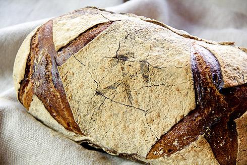 Kräftige Kruste im Plötziade-Brot Nr. 1