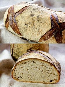 """""""Plötziade-Brot Nr. 1"""" von Lutz. Mit Weizensauerteig, Vorteig und Mehlkochstück."""