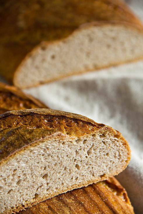 Einer der ersten Versuche. Überkneteter Teig = flaches Brot mit wenig Volumen.