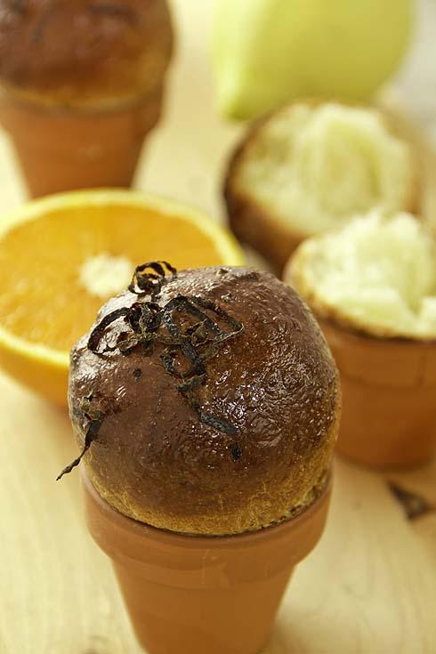 Dinkelbrioche mit Orangen und Zitronen