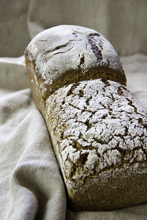 Experiment: Roggen-Dinkel-Brot - Schrot gegen Vollkornmehl