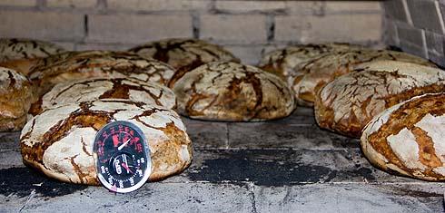 Fast fertig gebacken: Reines Roggensauerteigbrot