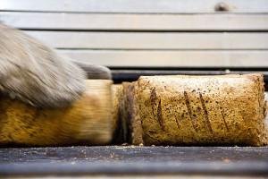 Angeschobene Gersterbrote werden gegen Ende der Backzeit auseinandergebrochen und kurz auf der Seite gebacken.