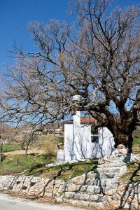 Eine Dorf-Moschee - nichts Exotisches in Albanien, sondern Normalität inmitten von katholischen und orthodoxen Kirchen.