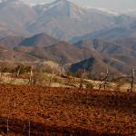 Die Brotkultur Zentral-Albaniens