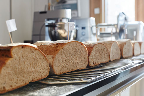 Die Weizenbrote im Anschnitt. Deutliche Volumenunterschiede, je nachdem wie gut das Klebergerüst und die Teigtemperatur entwickelt war.