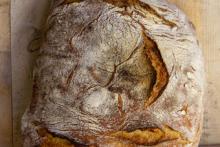 Panini oder Weißbrot mit gelber Krume